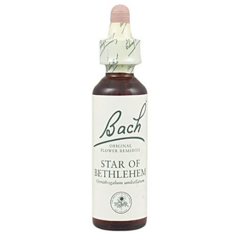 29 STAR OF BETHLEHEM 20ML