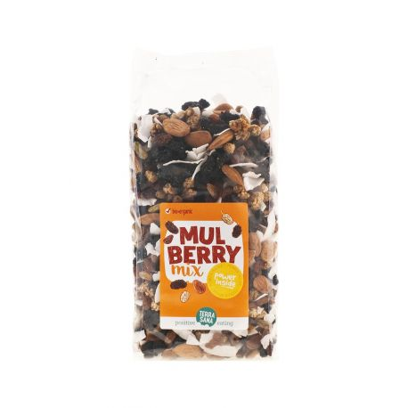 SNACK MIX MULBERRY700G